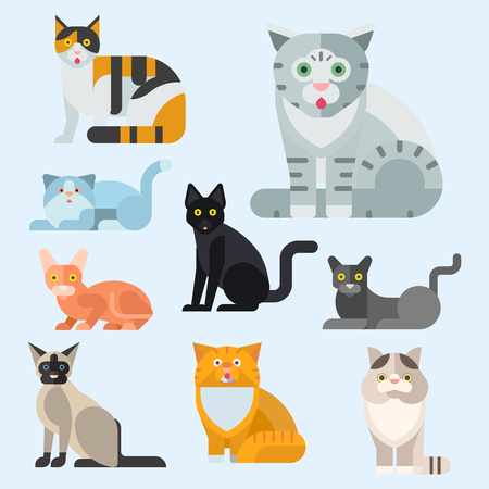 Cats vector illustration cute animal funny decorative kitty characters feline domestic kitten trendy pet drawn Imagens - 87392462