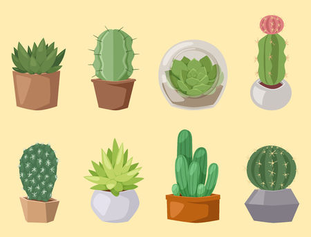サボテン自然砂漠の花緑メキシコ ジューシーな熱帯植物のサボテンの花のイラスト。