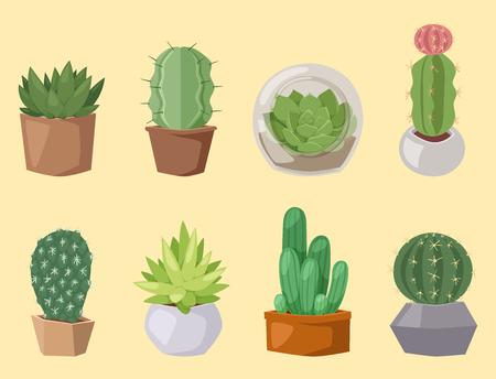선인장, 자연, 사막, 녹색, 멕시코, 즙이 많은, 열대, 선인장, 꽃,