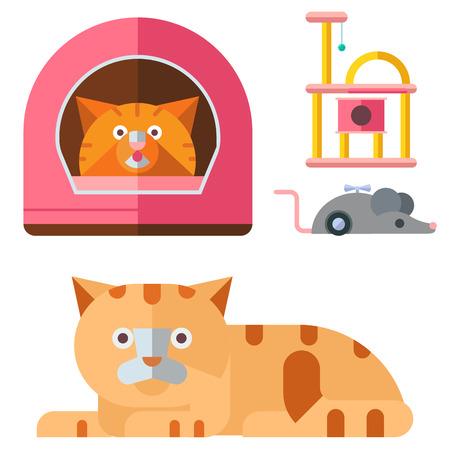 Colorful cat accessory cute animal icons pet equipment food domestic feline illustration.