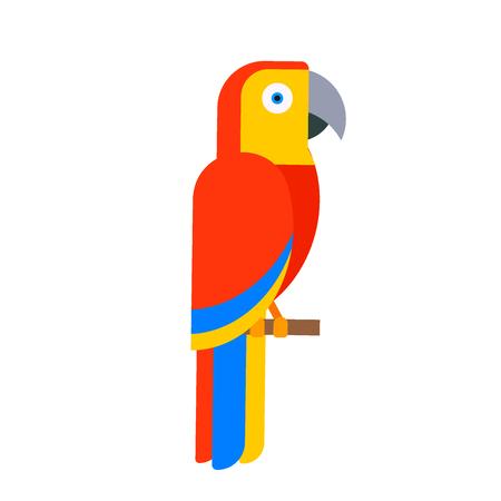 オウムの鳥、品種、種、動物、自然、インコ、カラフルなペット イラスト  イラスト・ベクター素材