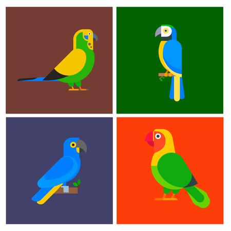 앵무새 조류, 품종, 브로셔, 자연, 다채로운 애완 동물 그림의 집합입니다.