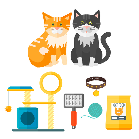 Colorful cat accessory and cute vector animal icons collection on white background.