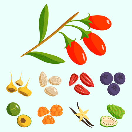 Vegetarisch voedsel Gezond Groentes-en-Vruchten Restaurantgerechten Cartoon Bessenvector.