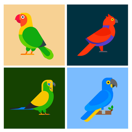 Parrots vector illustration
