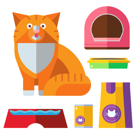 Colorful cat accessory and cute vector animal icons collection pet equipment elements food domestic feline illustration. Safety grooming design carry supplies and funny toys. Illustration