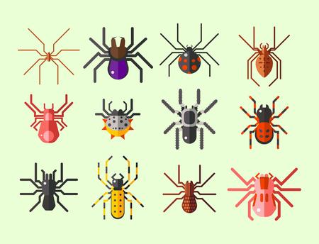 거미, 웹, 실루엣, 공포, 그래픽, 무서워, 동물, 디자인, 자연, 곤충, 위험, 공포, 할로윈, 벡터,