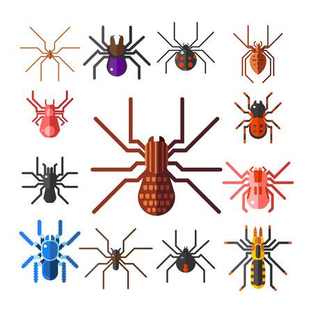 Spider web silhouet arachnid angst grafisch vlak eng engels ontwerp natuur insect gevaar horror halloween vector icoon.