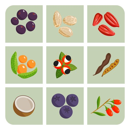 Vegetarian food healthy vegetable and fruits restaurant dishes cartoon berry vector. 向量圖像