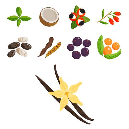 Set of vegetarian foods icon. Illustration