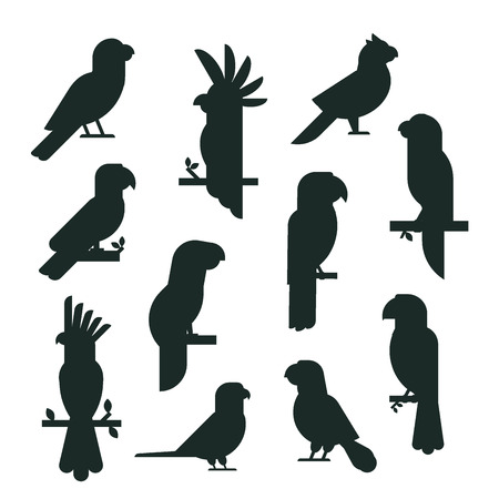 A silhouette different kind of birds vector illustration. Ilustracja