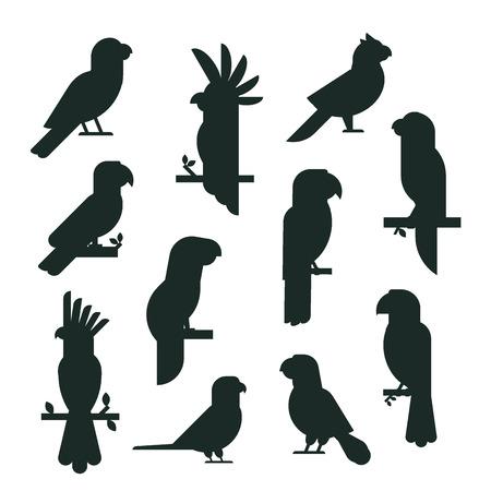 Een silhouet ander soort vogels vectorillustratie.