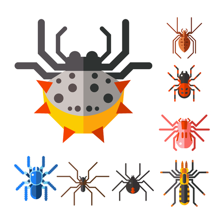 Spider silhouette vector icon.