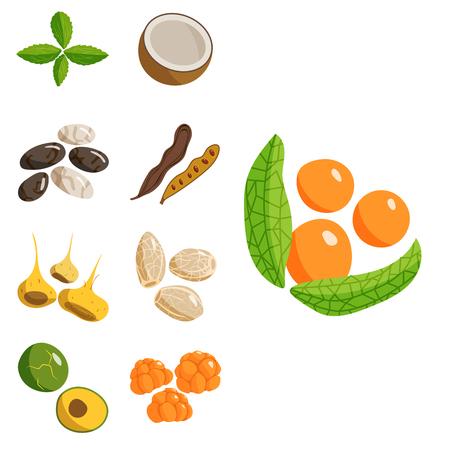채식 음식, 건강, 야채, 채식주의, 녹색, 음식, 신선한, 음식, 요리, 만화,