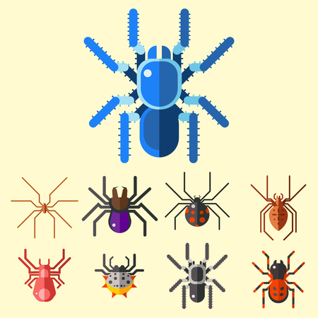 Spider web silhouette arachnid fear graphic flat scary animal poisonous design nature phobia insect danger horror tarantula halloween vector icon. Creepy warning symbol poison silhouette. Stok Fotoğraf