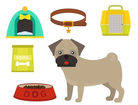 Pug dog playing vector illustration elements set flat style puppy domestic pet accessory. Stock Photo