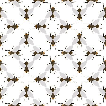 Fly insects wildlife entomologia bug natureza animal besouro biologia buzz ícone ilustração vetorial padrão sem costura Foto de archivo - 90743974