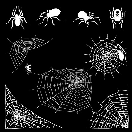 Spiders vector web silhouette on dark background.