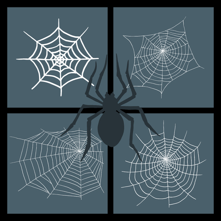 Set of spider web with spider at the center of four frames. Illustration