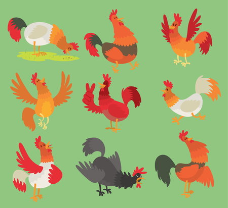 Vector rooster chicken cartoon character illustration. Rooster isolated on background. Farm animal bird symbol rooster, farm bird different pose.