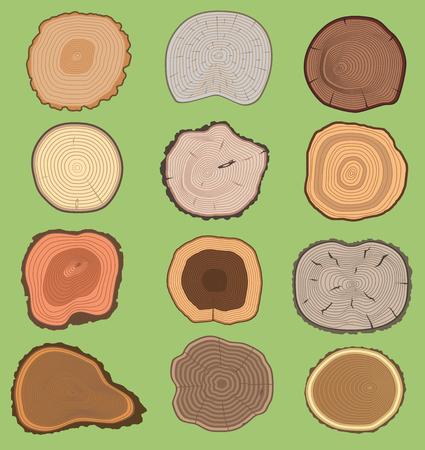 Tranche de bois texture vecteur en bois arbre vie âge cercle anneaux coupe matériel d'arbre. Ensemble de tranches d'arbre en bois naturel tronc en bois. Tranche de tronc d'arbre. Bague ronde en bois vieilli, cercle d'écorce isolé. Banque d'images - 96282654