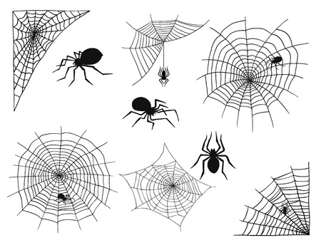 Spiders vector web silhouette spooky spider nature halloween element cobweb decoration fear spooky net. Stock Illustratie