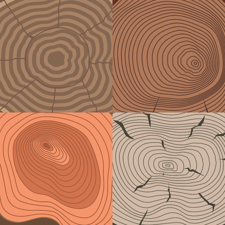 Tree wood trunk slice texture circle cut wooden raw material vector detail plant years history textured rough forest tree top background.