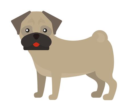 Dog breed french bulldog adorable doggy face pet animal puppy vector illustration. Domestic mammal funny canine purebred frenchbulldog.