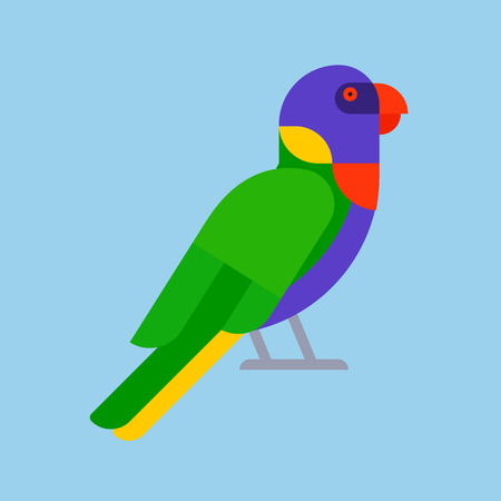 Parrot bird green breed species and animal nature tropical parakeets education colorful pet vector illustration. Macaw wild beak wing exotic color avian perch feather avifauna. 일러스트