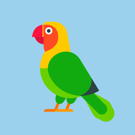 Parrot bird green breed species and animal nature tropical parakeets education colorful pet vector illustration. Macaw wild beak wing exotic color avian perch feather avifauna. Stock Illustratie