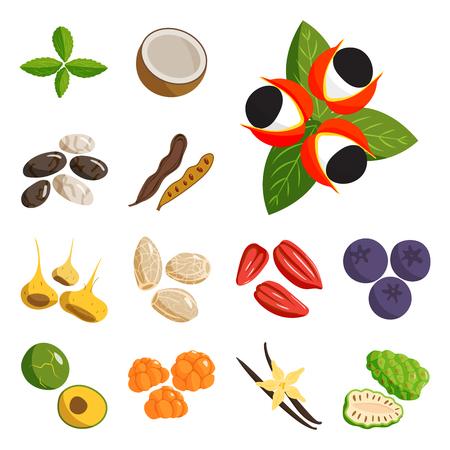 Vegetarian food set, healthy vegetable and fruits. Restaurant dishes cartoon vector illustration.