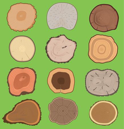 Wood slice texture vector set