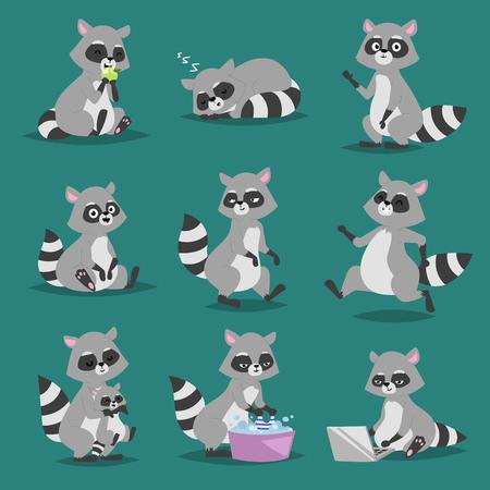 Raccoon vector illustration cartoon set of fun smile drawing artwork furry cartoon raccoon cute mammal. Wild tail nature happy cartoon raccoon mammal gesture wildlife character