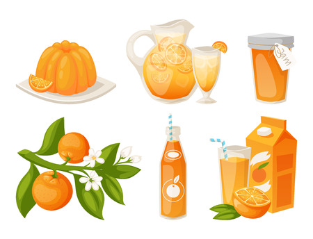 Oranges and orange products vector illustration.
