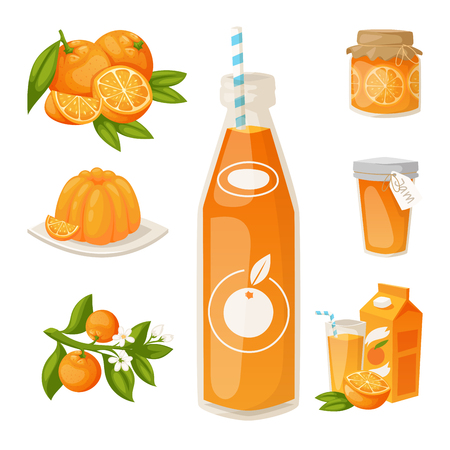 Oranges and orange products vector illustration natural citrus fruit vector juicy tropical dessert beauty organic juice healthy food. Stock Illustratie