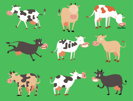 cow vector illustration set