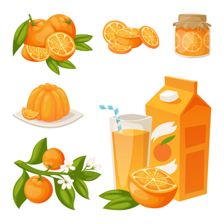 Oranges and orange products vector illustration natural citrus fruit vector juicy tropical dessert beauty organic juice healthy food. Çizim
