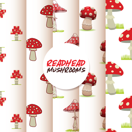 Vector amanita mushrooms pattern background set vector poisonous season toxic fungus food cartoon muscaria, toadstool background. Dangerous plant spotted fungi forest illustration..