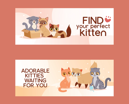 Pets adopt find friendship poster vector illustration. Friendly homeless shelter domestic little animals. Cute poster with kittens care. Love kitten and cat adoption banners.