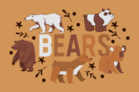 Bear vector wild animal character brown grizzly panda she-bear and polar bear illustration backdrop cartoon teddy-bear background animalistic wallpaper.