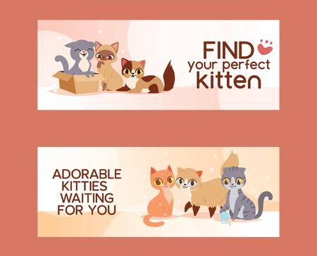 Pets adopt find friendship poster illustration. Love kitten and cat adoption banners.