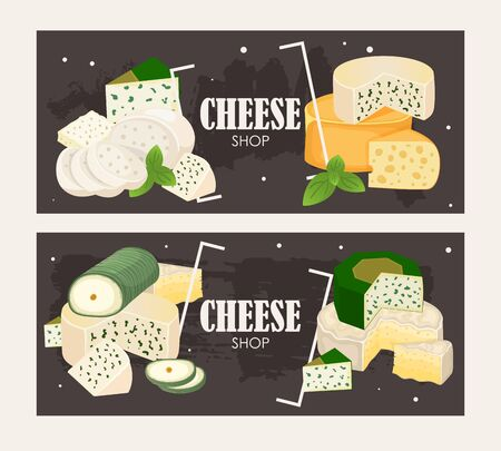 Cheese shop banner, vector illustration. Various kinds of different cheese, tasty natural dairy products, delicious blue cheese. Organic food store poster, brochure or booklet Illustration
