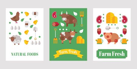 Farm product banner, vector illustration. Set of flat style cards with farm animals and natural organic food from local farmers. Cow, sheep, pig and chicken. Fresh meat, healthy food, banner template Ilustracja