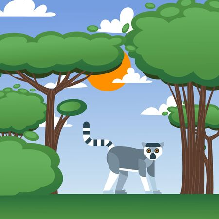 Lemur in summer nature landscape, vector illustration. Cute animal from Madagascar, flat style cartoon character. African wildlife lemur, green trees on sunny day. Exotic animal safari trip landscape