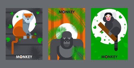 Apes and monkeys in flat style banners, vector illustration. African zoo animals, jungle safari, exotic wildlife. Zoo invitation banner, brochure cover template. Tropical ape gorilla, jungle animals