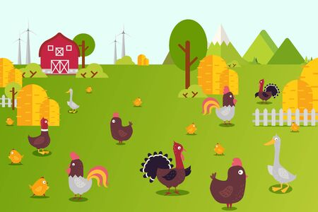 Animal farm collection vector illustration. Hens, ducks, turkeys and chicks in farmland yard. Birds breeding in country, ecologicaly clean environment. Banner green grass and haystacks.