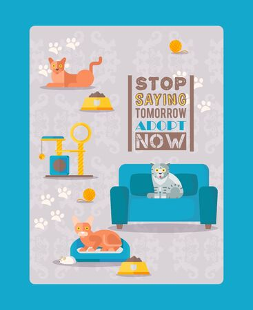 Adopt cats now result, stop saying tommorow vector illustration. Template flyer animal shelter, take strat cat home. Pet character on upholstered furniture near feeder, poster.