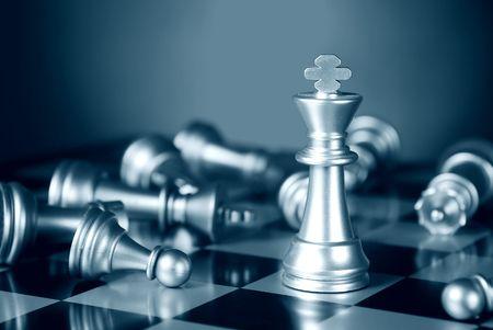 ajedrez: Combinaci�n de ajedrez. Una serie completa en cartera por el ajedrez de palabra.