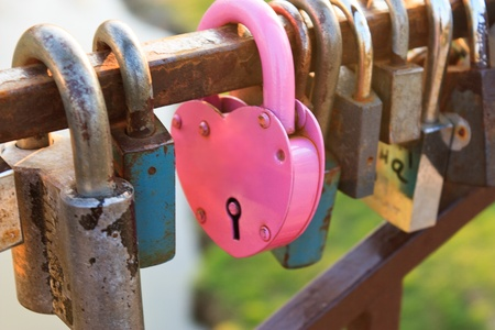 Pink heart-shaped lock between the other locks photo