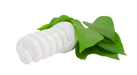 Energy saving light bulb with leaves isolated Stock Photo - 13698195
